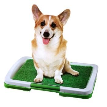 Tapete WC relva artificial para cães